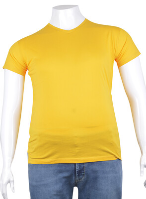 ZegSlacks - V Yaka Basic T-Shirt (tst0272)